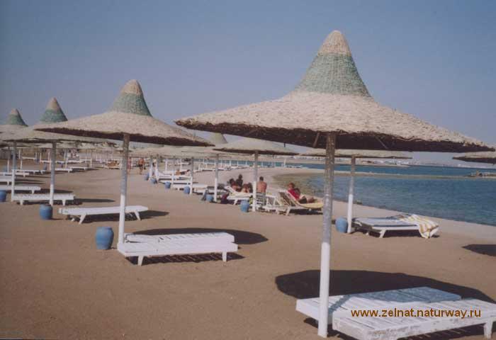 Нудисты в египте фото 22095 фотография
